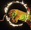Цирки в Муслюмово